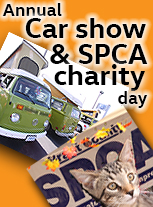 annual classic vw car show and spca charity day