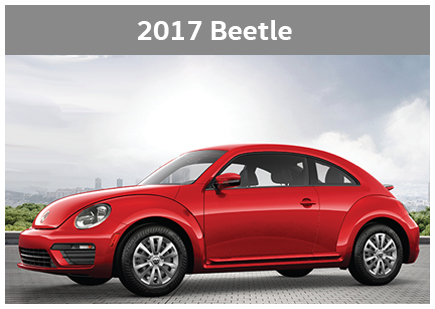 2017 model pic beetle