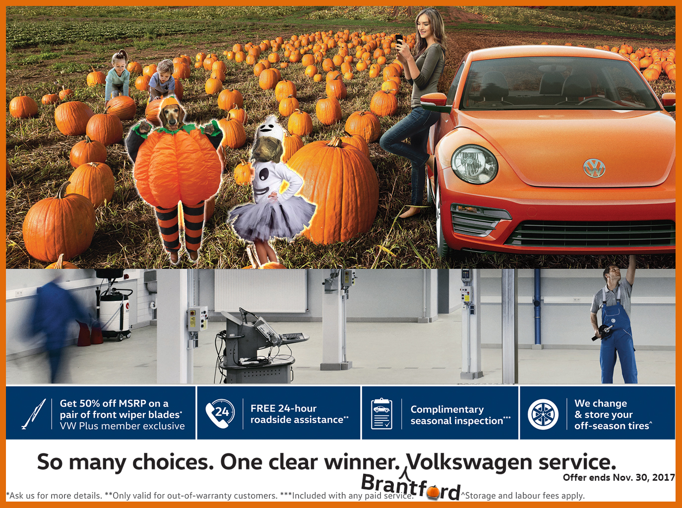 Volkswagen Fall service specials