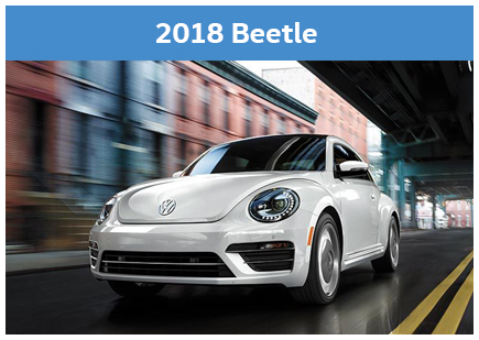 2018 model pic beetle